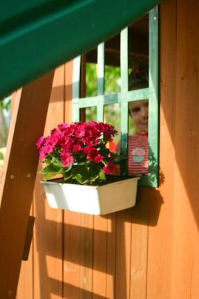 Windowbox-6