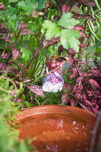 Fairygarden14